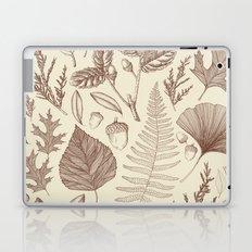 Study of Growth Laptop & iPad Skin