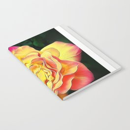 Bold Notebook