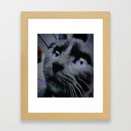 Smokey the Philosopher Framed Art Print