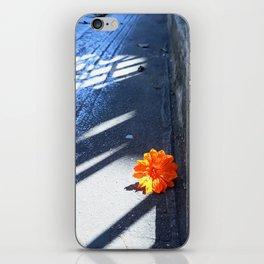 Orange You Glad? iPhone Skin