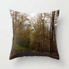 scenic drive India Throw Pillow