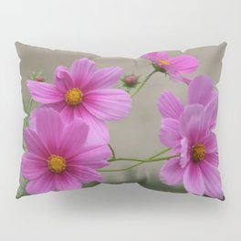 Pink Cosmo Daisies Pillow Sham