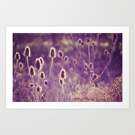 Purple Light Art Print