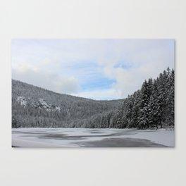 Winter Zauber 2 Canvas Print