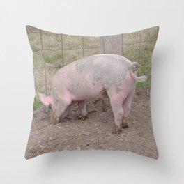 Muddy Pig's Feet Throw Pillow