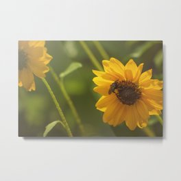Buzzin' Around Metal Print
