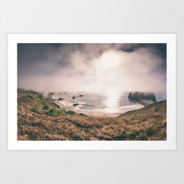 The (Sonoma) Beach - Goat Rock. Art Print