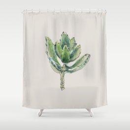 Kalanchoe Tomentosa - Panda plant Shower Curtain