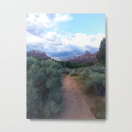 Desert path Metal Print