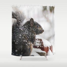 Winter Sqirrel Shower Curtain