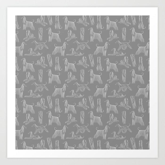Afghan Hounds on Grey Background Kunstdrucke