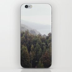 forest for all the trees iPhone & iPod Skin