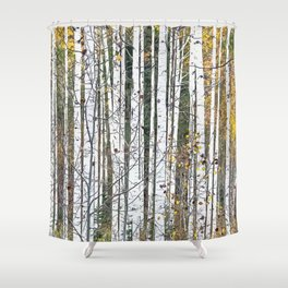 Aspensary forests Shower Curtain