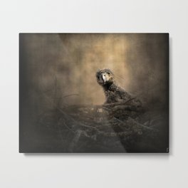 Lone Eaglet In The Nest Metal Print