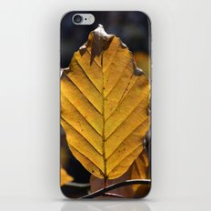 Yellow Leaf  iPhone & iPod Skin