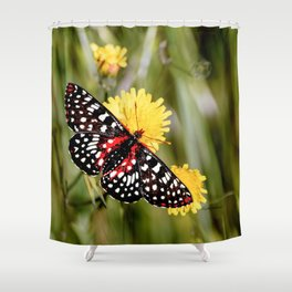 A Red Dotted Checkerspot Shower Curtain