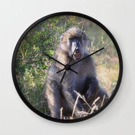 """Hey, whassup,"" said the Baboon Wall Clock"