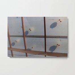 Bird Feet Metal Print