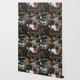 three rivers bridge Wallpaper