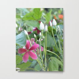Flower for the Peace Metal Print