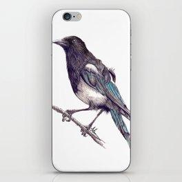 Juvenile Magpie iPhone Skin