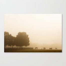 Under a Foggy Sunrise Canvas Print