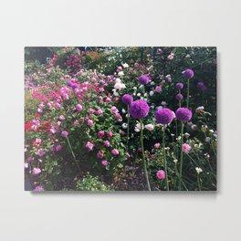 New York Botanial Garden - Photograph Metal Print