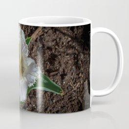 Feather Coffee Mug