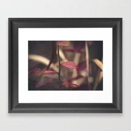 Into Darkness Framed Art Print