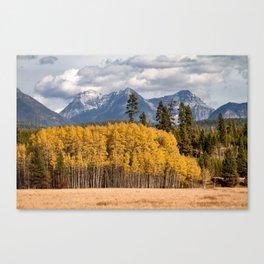 Big Prairie - Glacier National Park Canvas Print