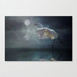 Moonlight Rhapsody Canvas Print