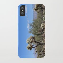 The Beauty Of The Desert iPhone Case
