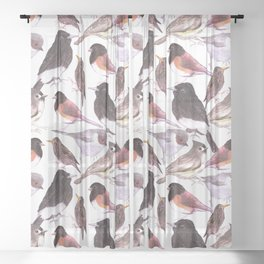 Wild birds watercolor- titmouse, bushtit, starling, phoebe, juncos Sheer Curtain