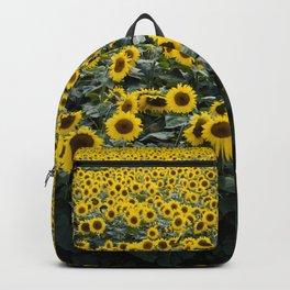 Sunflower Field | Hapinnes Backpack