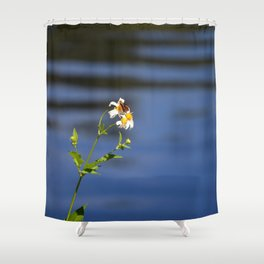 Butterfly on camomile Shower Curtain