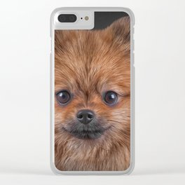 Drawing Dog Pomeranian Spitz Clear iPhone Case