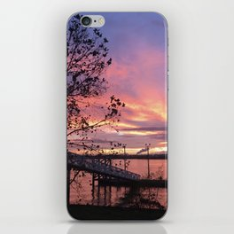 Zoo Cruise Landing - Sunsets at The Fly series iPhone Skin