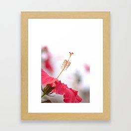 Pistil grip Framed Art Print