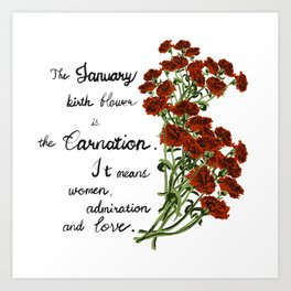 Carnation - Birth Month Flower for January Art Print