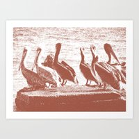 Pelican Point in Mexico Art Print