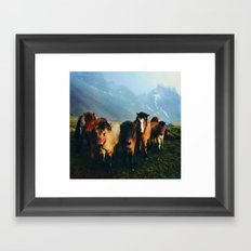 The Friends We Made In Iceland Framed Art Print
