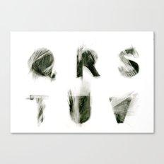 Q R S T U V  Canvas Print
