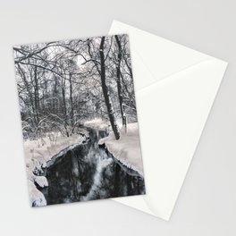 Almost frozen (3\4-BW, HDR) Stationery Cards