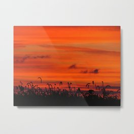 Sunset - Calm Warm Night Metal Print