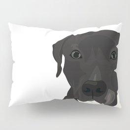 Atticus the Pit Bull Pillow Sham