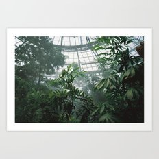 Constructed Nature Art Print