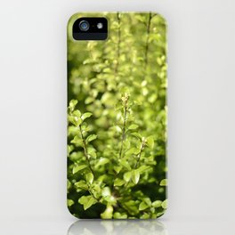 Through The Green iPhone Case