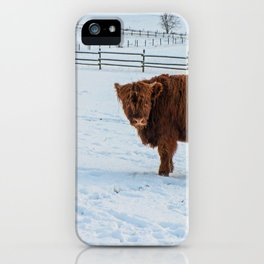 Are you looking at me, Scotish Highland Cow iPhone Case