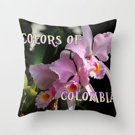 Colors of Colombia Throw Pillow