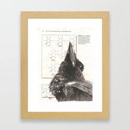 Raven 354 Framed Art Print